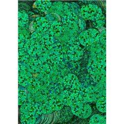 zelené flitry 10 mm (1 cm) rovné 6755-164 bal. 3 g (cca160ks)