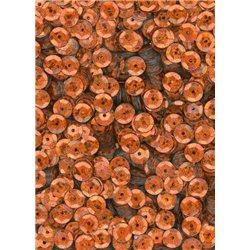 flitry 6 mm miska oranžové laser 6697-205 bal. 3 g (cca375ks)