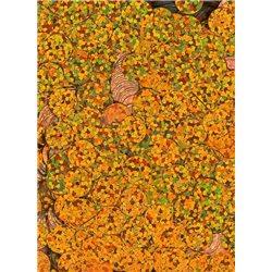 oranžové flitry 8 mm rovné 6726-205 bal. 3 g (cca200ks)