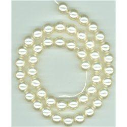 Korálky, voskované perle, průměr 10 mm, kulaté, světle krémové