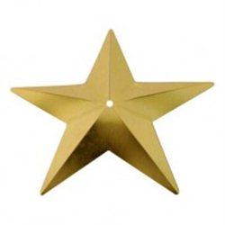 Flitry - zlatá hvězda s dírkou 329-196  hvězda 5 g