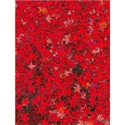 Flitry - drobné hvězdičky 2456-163  hvězdička 5 g